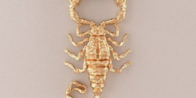 scorpion necklace