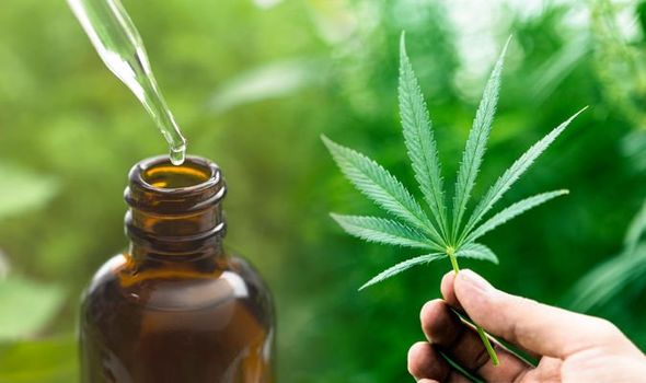Get an alternative for your recreational needs